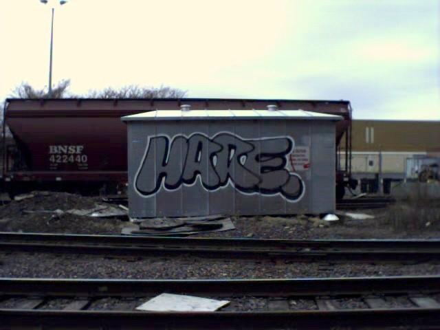 hare_hood.jpg